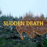 Artwork, Sudden Death by Rhona Mühlebach