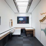 Alt-w: Blush Response exhibition 1